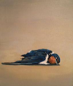 Dead Swallow